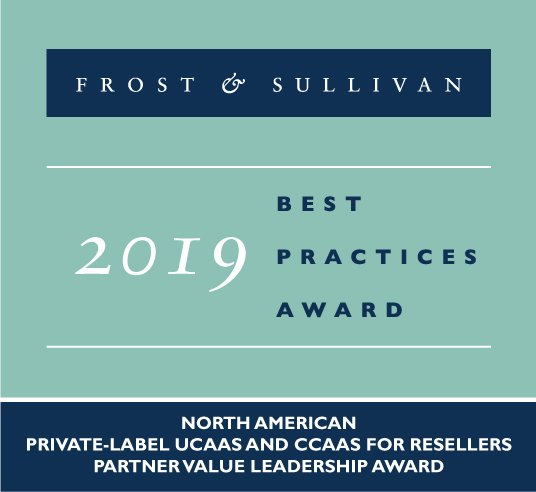 2019 Frost & Sullivan Partner Value Leadership Award